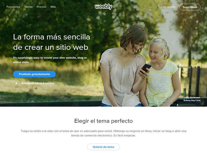 Diseño Desarrollo Página Web tienda online comercio electrónico y Posicionamiento web SEO-4
